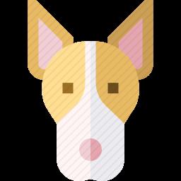 安达卢西亚猎犬