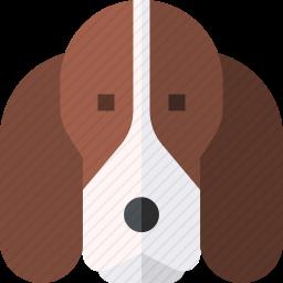 巴吉度猎犬