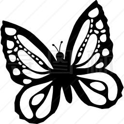 美丽的蝴蝶从顶视图略微旋转到左边图标