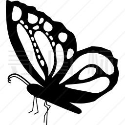 蝴蝶美丽侧翼造型,翅膀上装饰设计图标