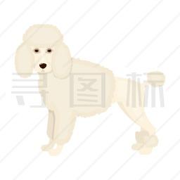 贵宾犬图标
