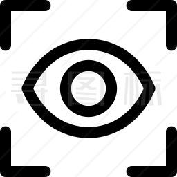 眼睛识别图标